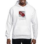 """Child's Play"" Hooded Sweatshirt"