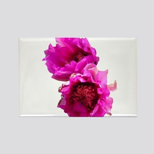 Prickly Pear Flowers Rectangle Magnet