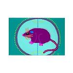 Opossum Rectangle Magnet (10 pack)