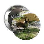 "Welsh Corgi Happy Dog 2.25"" Button"