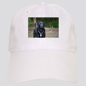 Gage - Black Labrador - Photo Cap