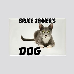 Bruce Jenner's Dog Rectangle Magnet