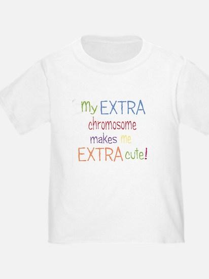 2-DS shirts 001 T-Shirt