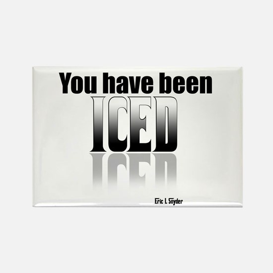 You have been Iced Rectangle Magnet