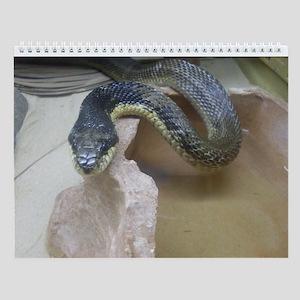Reptiles Wall Calendar