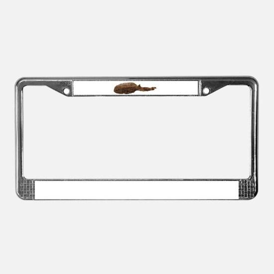 Unique Beaver License Plate Frame