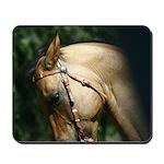 Western Buckskin Horse Mousepad