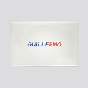 Guillermo Magnets