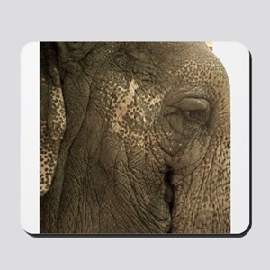 Lucy the elephant Mousepad