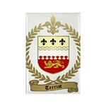 TERRIOT Family Crest Rectangle Magnet (100 pack)
