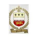 TERRIOT Family Crest Rectangle Magnet (100 pack)