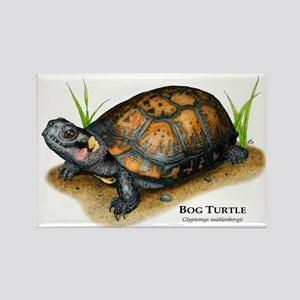 Bog Turtle Rectangle Magnet