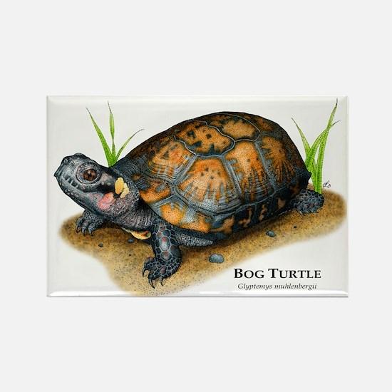 Bog Turtle Rectangle Magnet