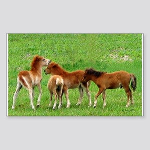Mini Colts Playing In Field Rectangle Sticker