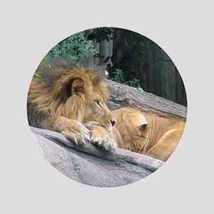 """Picturesque Lions 3.5"""" Button"""