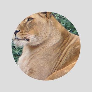 """Lioness Portrait 3.5"""" Button"""