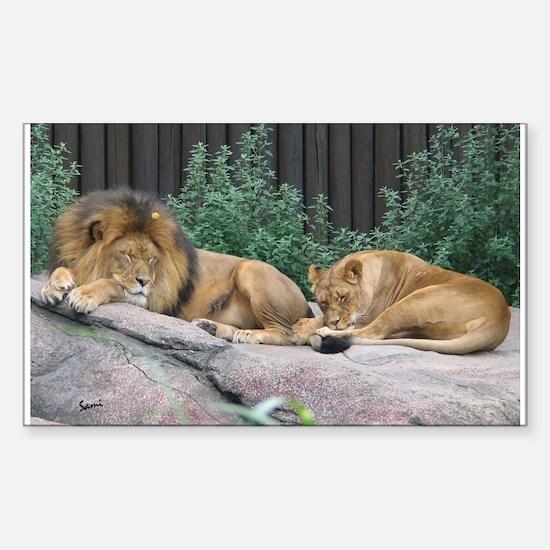 Sleepy Lions Rectangle Decal