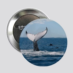 """Whale Watch 2.25"""" Button"""