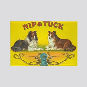 Nip & Tuck Collie Dogs Rectangle Magnet