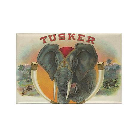 Tusker Elephant Vintage Art Rectangle Magnet