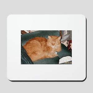 Orange Cat Mousepad