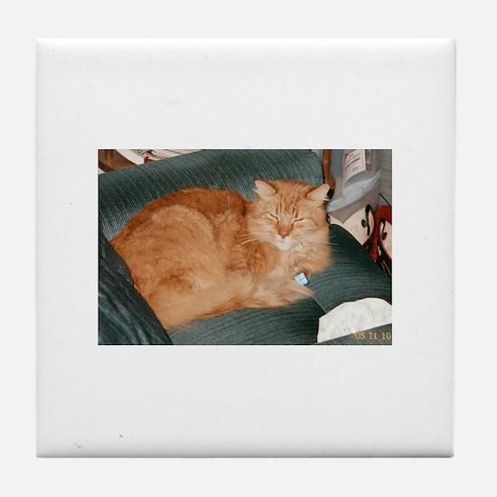 Orange Cat Tile Coaster