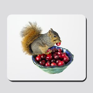 Squirrel with Cranberries Mousepad