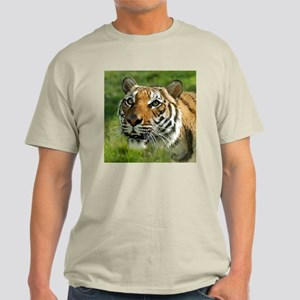Indochinese Tiger 2 Ash Grey T-Shirt