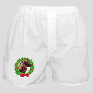 Xmas Amer Water Spaniel Boxer Shorts