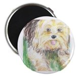 Portrait of a Yorkie Magnet