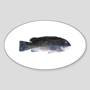 Blackfish - Tautog (m) Oval Sticker