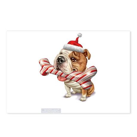american bulldog bulldogs Postcards (Package of 8)