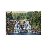 Gooseberry Falls Rectangle Magnet (10 pack)