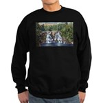 Gooseberry Falls Sweatshirt (dark)
