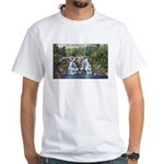 Gooseberry Falls White T-Shirt