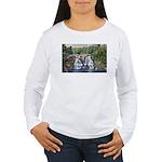Gooseberry Falls Women's Long Sleeve T-Shirt