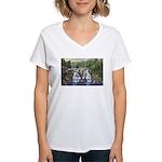 Gooseberry Falls Women's V-Neck T-Shirt