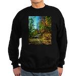 A new Path Sweatshirt (dark)
