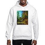A new Path Hooded Sweatshirt