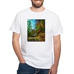 A new Path White T-Shirt