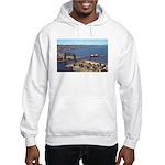 Duluth Harbor Hooded Sweatshirt