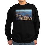 Duluth Harbor Sweatshirt (dark)