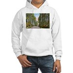 Echo Trail Hooded Sweatshirt