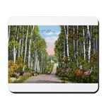 Echo Trail Mousepad