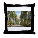 Echo Trail Throw Pillow