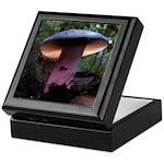 Purple Mushroom Keepsake Box