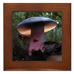 Purple Mushroom Framed Tile