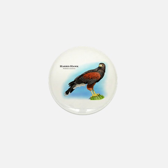 Harris Hawk Mini Button