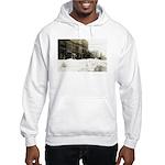 Snowed-in Front Street Hooded Sweatshirt