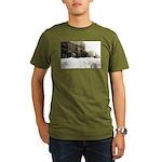 Snowed-in Front Street Organic Men's T-Shirt (dark